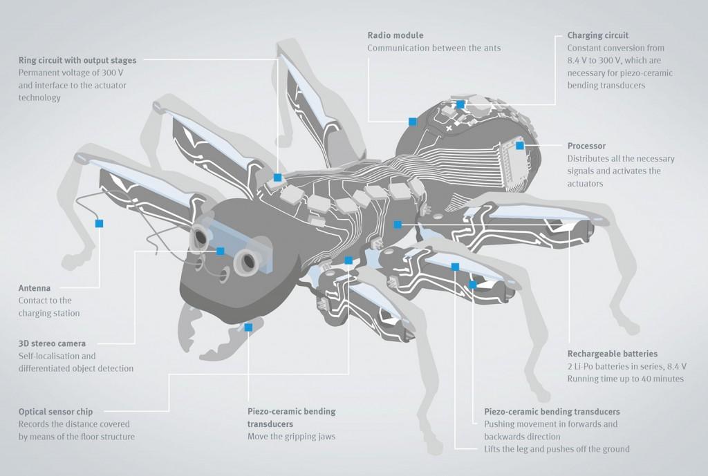 bionic-ant